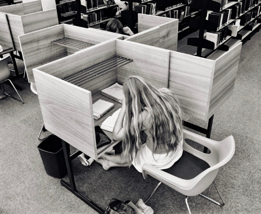 Study Carrel in Nathan Library